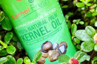 J-Palm Kernel Fresh Skincare Products Review